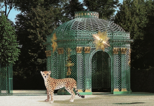 Cheetah and Pavillion at Sans Souci