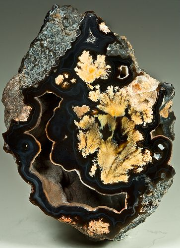 Bouquet Agate - Marfa, Texas2