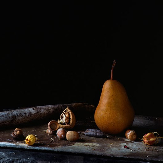 PCG160, Still Life with Bosc Pear, Edition of 10, 22 x 22""