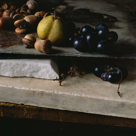 PCG164, Still Life With Acorns, Pear and Grapes, 2014, Edition of 10, 15 x 15