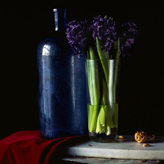 PCG167, Still Life With Hyacinth and Walnut, 2014, Edition of 10, 22 x 22