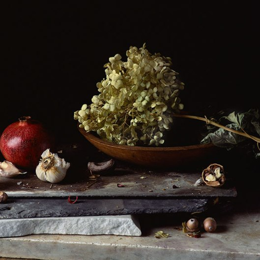 PCG175, Still Life with Pomegranate, Garlic, Hydrangea and Nuts, 2014, Inkjet print Edition of 10, 22 x 22