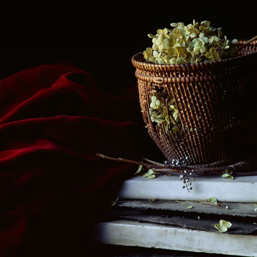 PCG176, Still Life with Basket and Hydrangea, 2014, Inkjet print, Edition of 10, 22 x 22