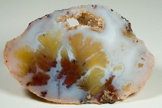 Plume Agate - Woodward Ranch - Alpine, Texas