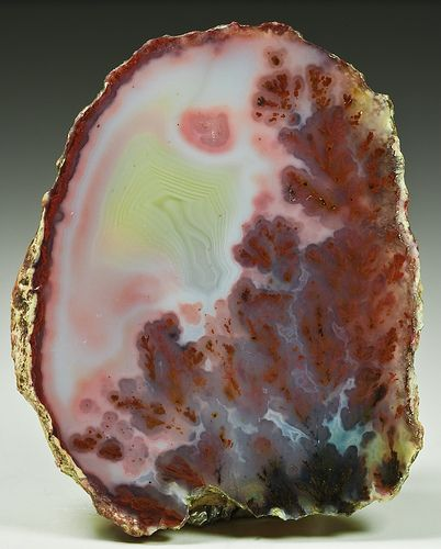 Plume Agate - Woodward Ranch - Alpine, Texas2