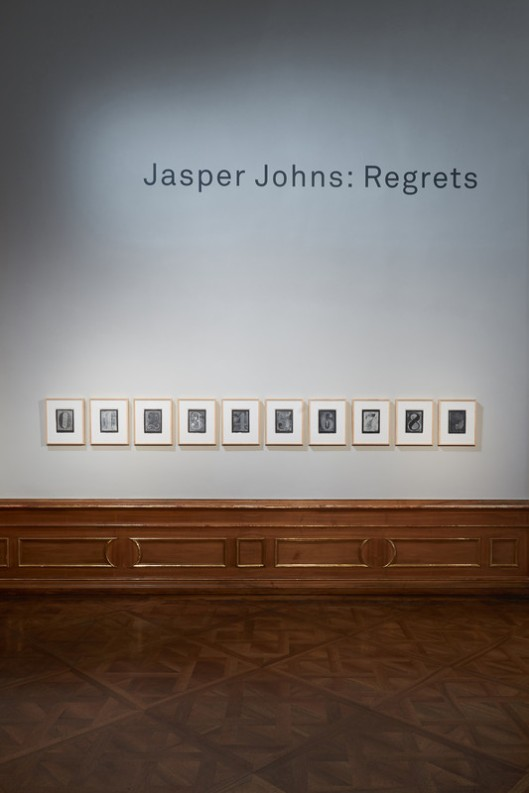 jasper_johns_regrets_058